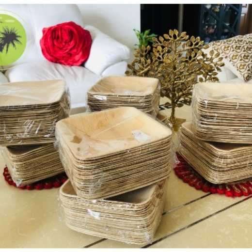 Areca Palm Leaf Plate, Bamboo look Disposable Biodegradable Eco Friendly Areca Plate For Picnic Party Wedding Birthday Event Made in India
