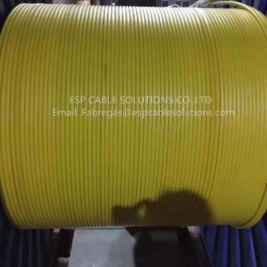Tubing Encapsulated Cable(TEC Cable)