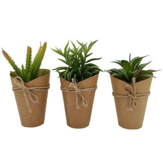 Xianju Can fake plant decoration