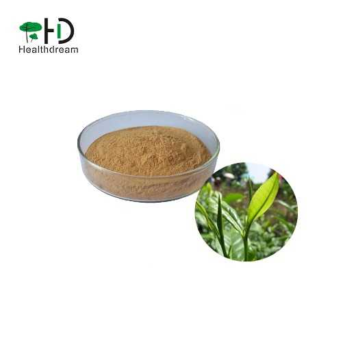 Organic Green tea extract, with active ingredients EGCG/ L-theanine/Tea Polyphenol