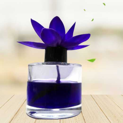 Wholesale Indoor aromatherapy Suppliers